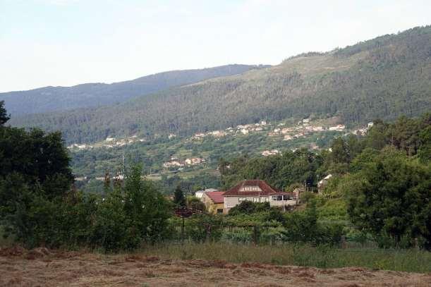 Camino Português DSC01872