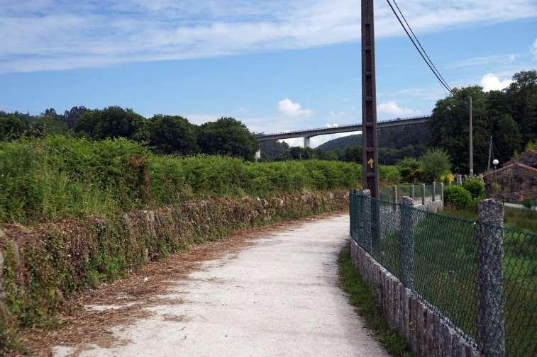Camino Português DSC02005