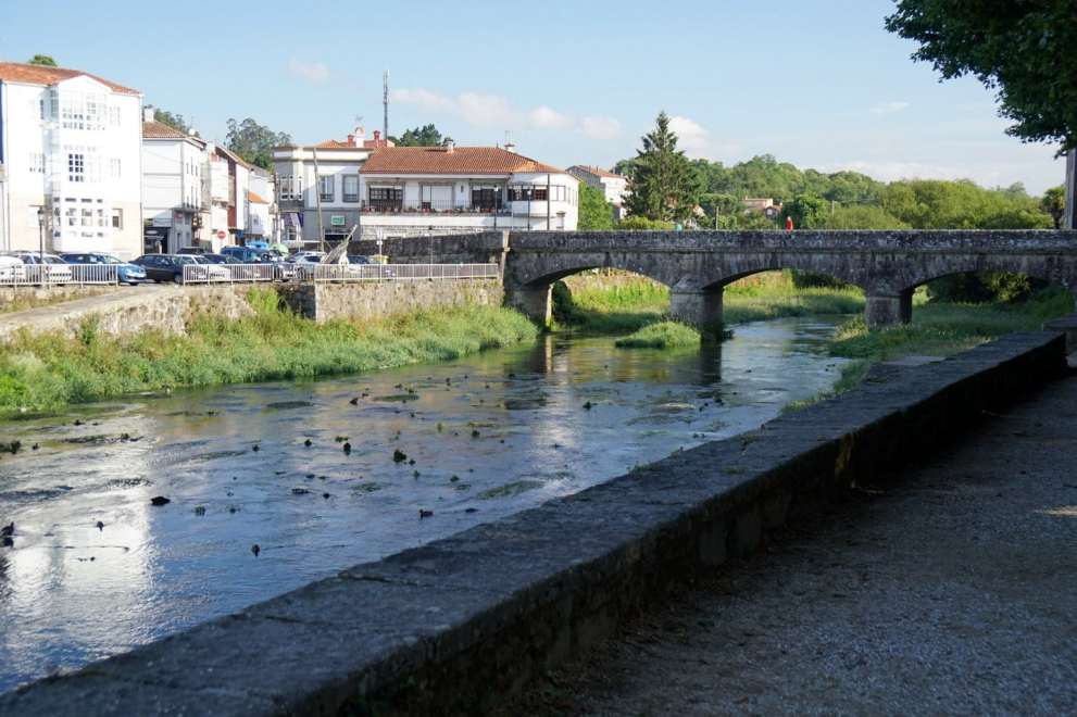 Camino Português DSC02049