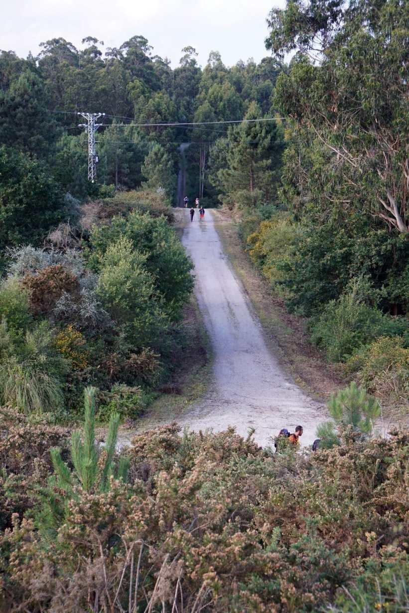 Camino Português DSC02093