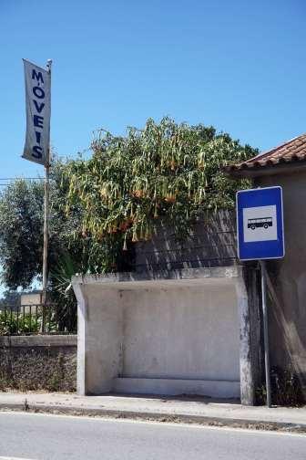 Porto DSC01204