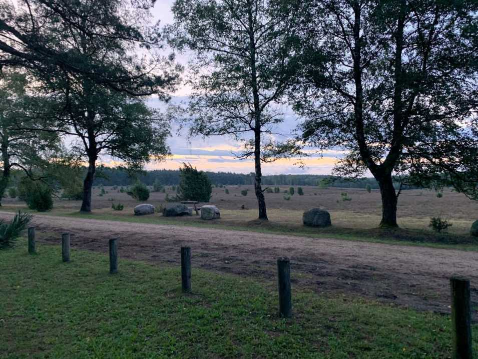 Wandern in der Südheide IMG_4257