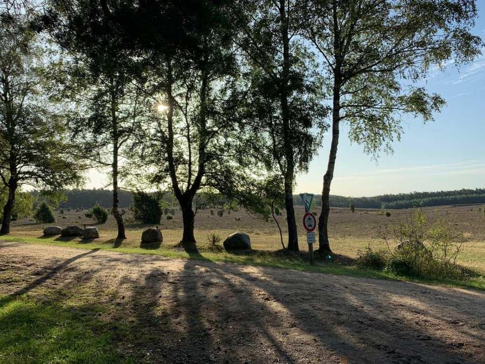 Wandern in der Südheide IMG_4283