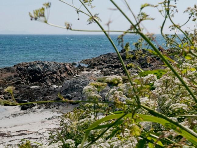 cottage_coastalfoliage