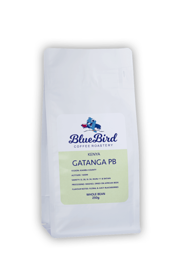 Kenyan specialty coffee beans