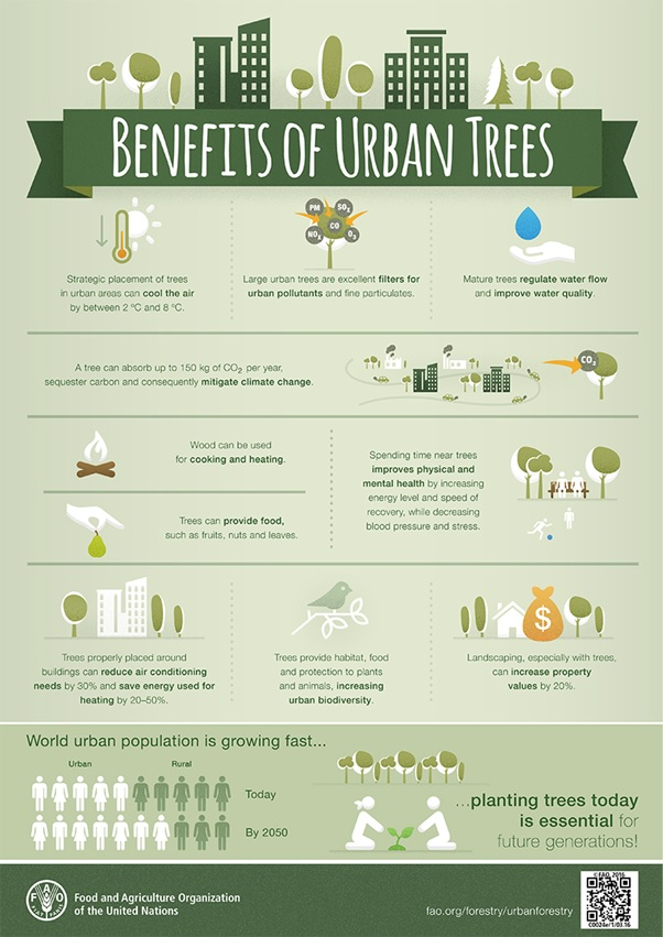 Benefits of Urban Trees nfographic