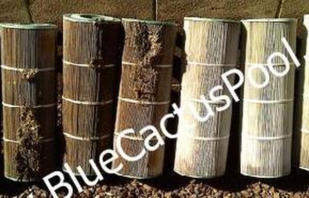 Body oils and suntan lotions can adhere to the cartridge and simply spraying the filter with the ho. Pool Filter Cleaning Repair New Cartridge Filters De Filters Sand Filters Phoenix Scottsdale Anthem Peoria Glendale Surprise Arizona Pool Repair And Cleaning Service