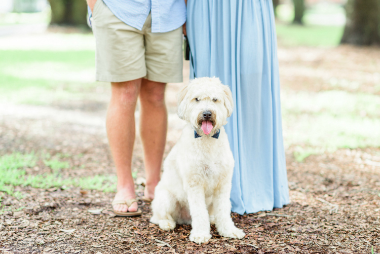 Dapper Dog Steals the Show in Engagement Photos | Photo Credit: The Veil Wedding Photography