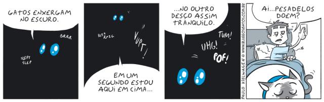 Tira em quadrinhos do Blue. Blue mostra como gatos são ótimos para enxergar no escuro, principalmente enquanto estamos dormindo.
