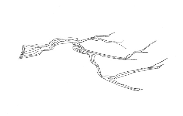 Twig Clipart; hand drawn dividers to decorate your blog or