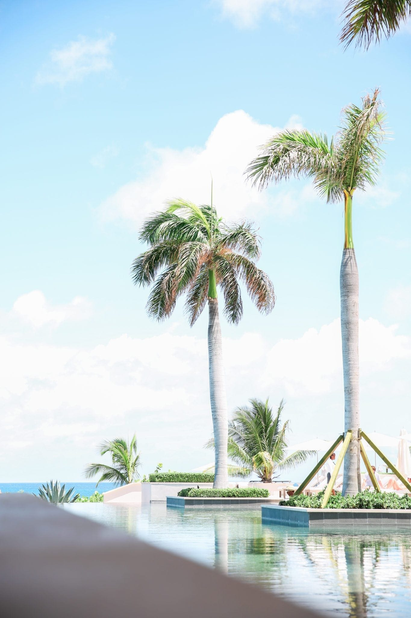 Four Seasons Resort Anguilla view of Serenity Pool with palm trees. Why use a travel agent.