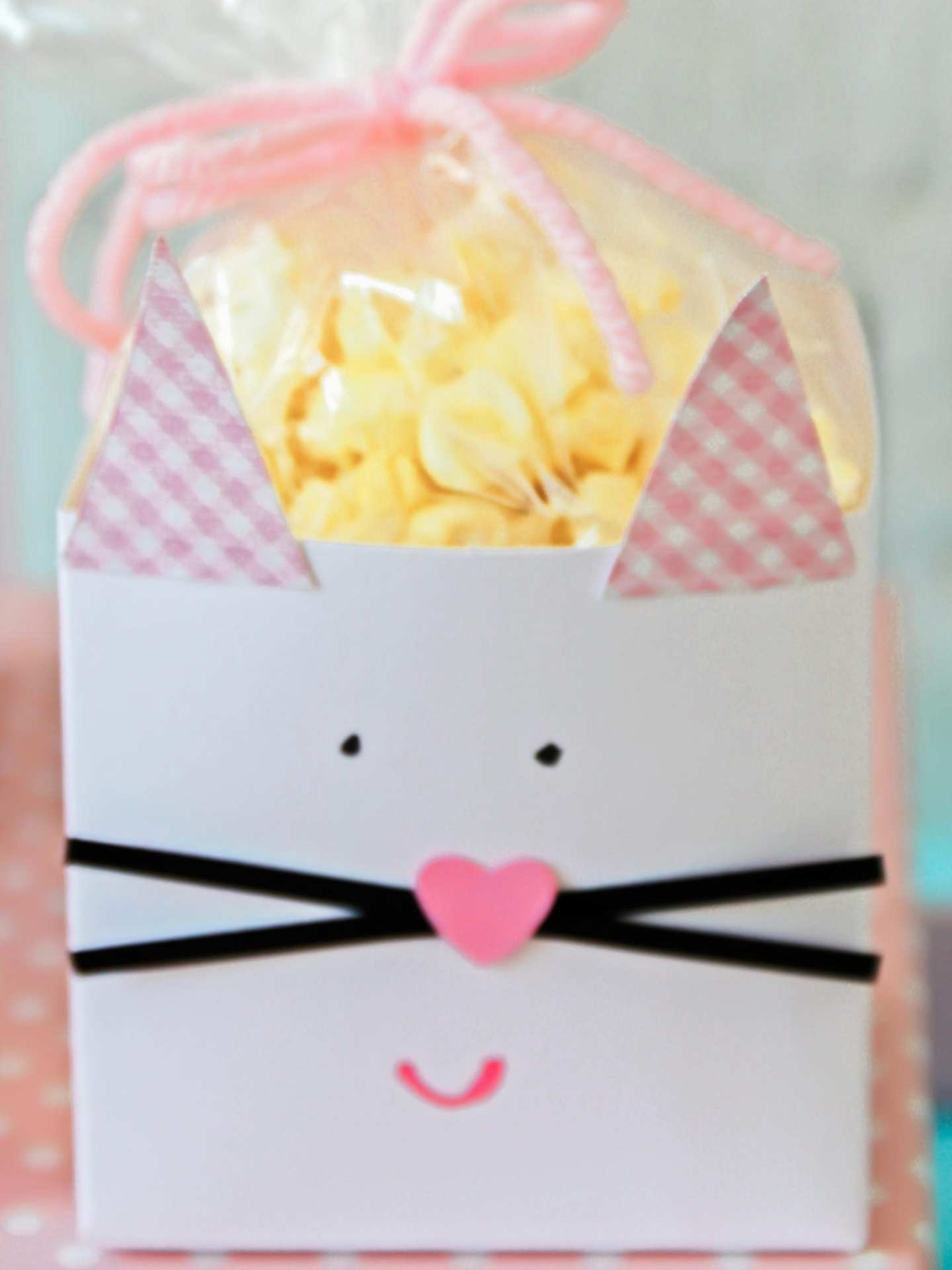 Cat goodie bags for childrens party.