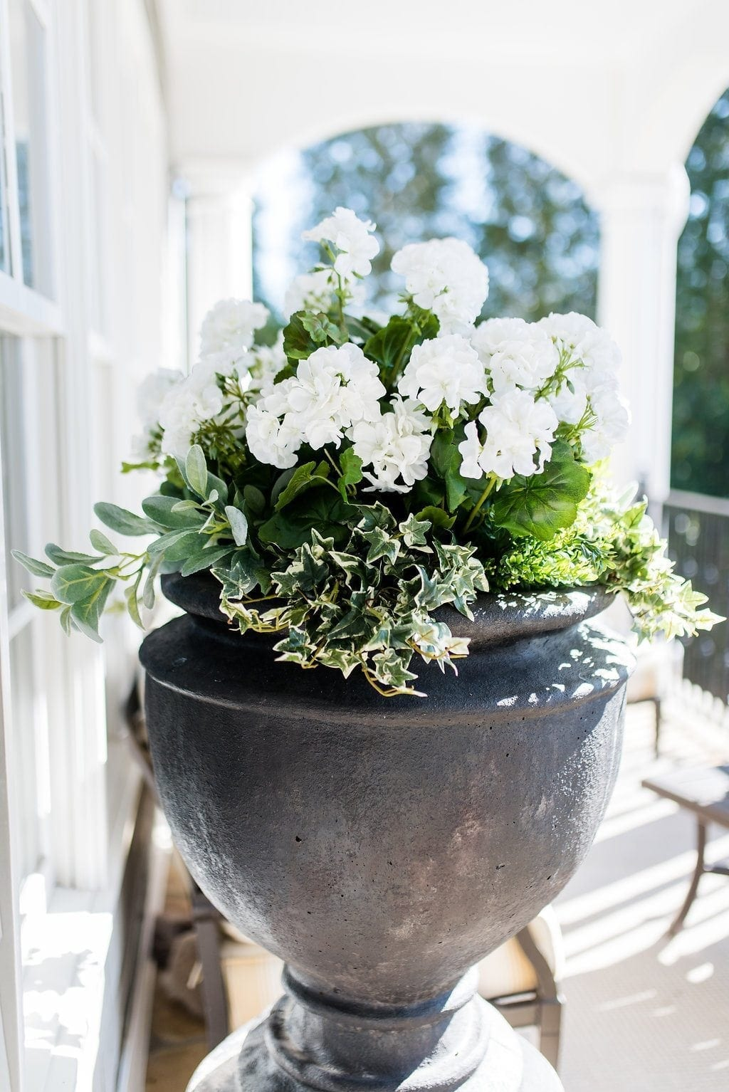 Silk White Geraniums in tall black container.