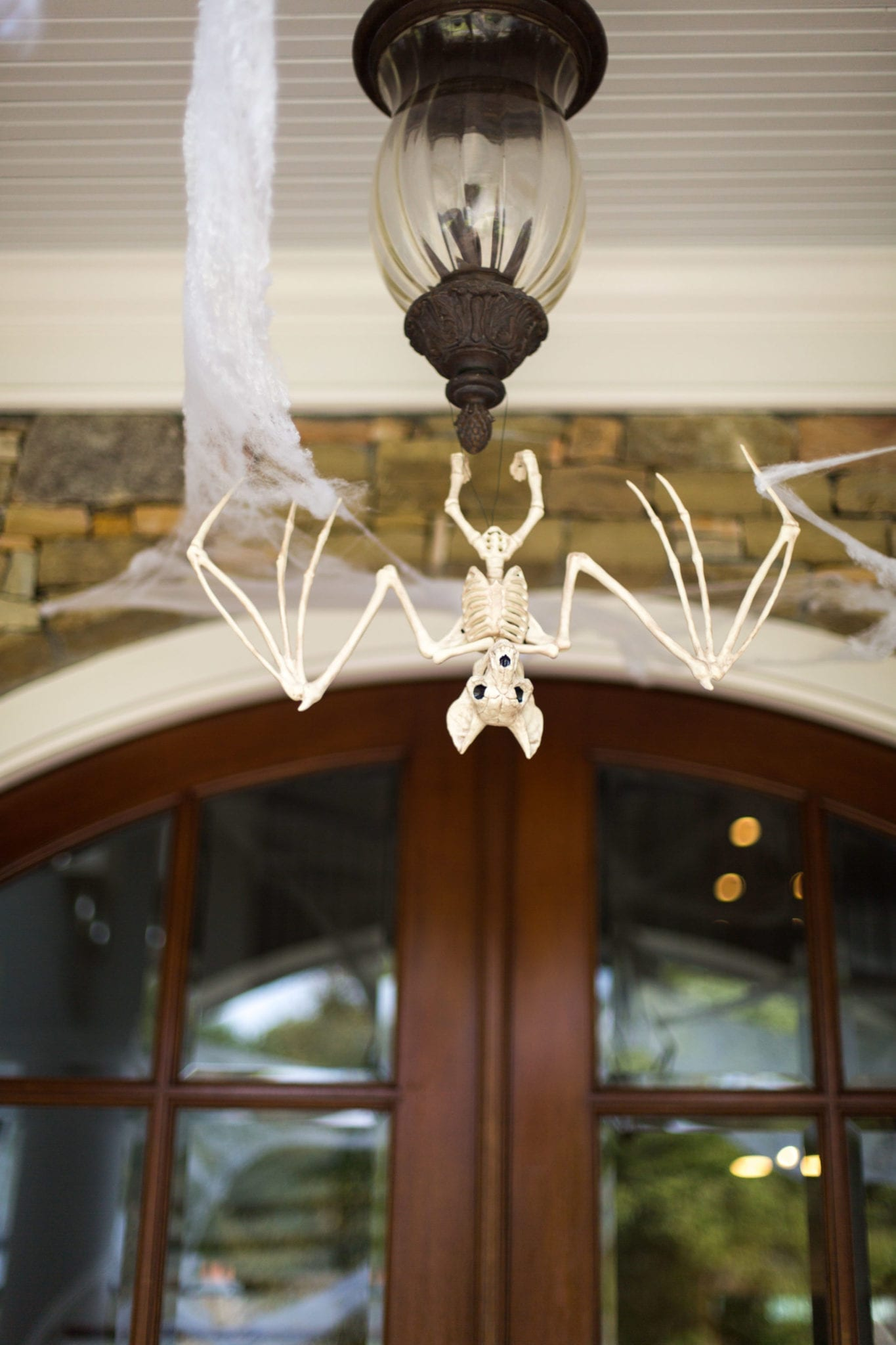 Bat Skeleton hanging from lantern.
