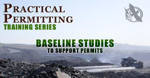 Baseline Studies to Support Permits