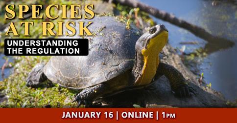 Species at Risk Training