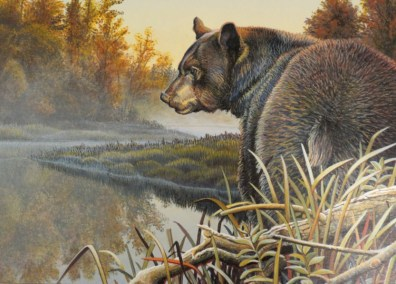 Animal Frolics - bear