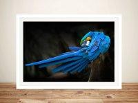 Blue Macaw Parrot Canvas Beautiful Artwork by Blue Horizon ...