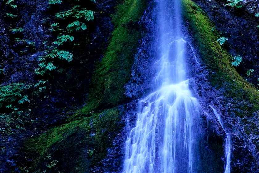Marymere Falls, Olympic National Park, Washington