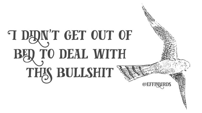 Courtesy @effinbirds