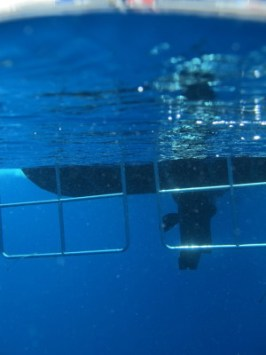 Dive Boat under the surface