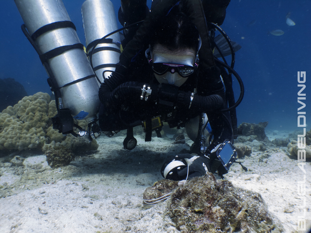 CCR Rebreather Training