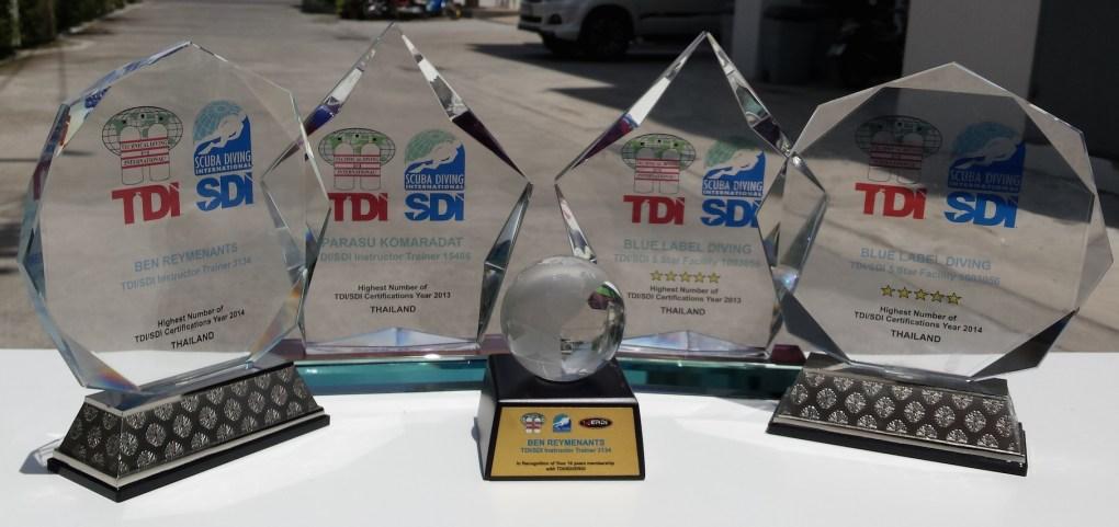 TDI awards 2013 and 204