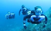 Triton rebreather diving