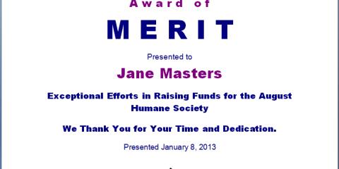 Merit Award Template