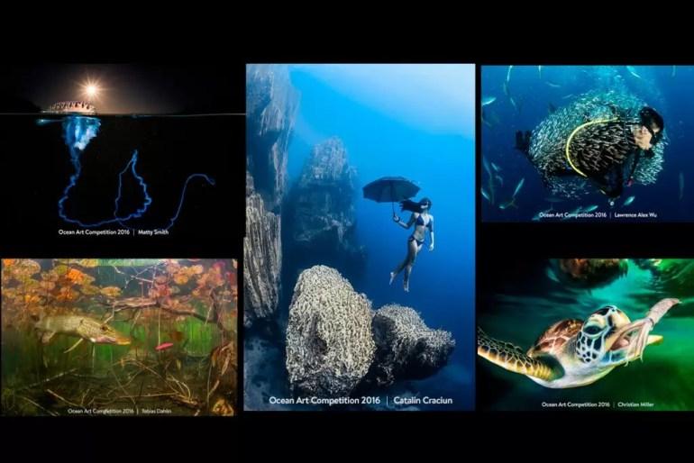 Ocean art konkurs fotograficzny podwodna fotografia