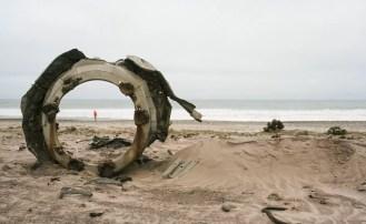 Wakacje na Wybrzeżu Szkieletowym, cmentarzysku wraków