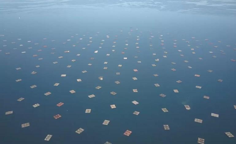 Gospodarstwo morskie, hodowla małży w Galicji, Hiszpania fot.:Dronestagram/Borafilms