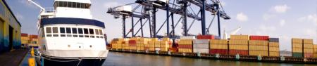 import-export-software