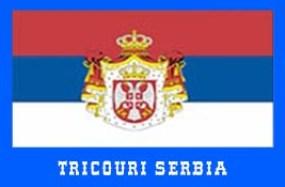 steag serbia