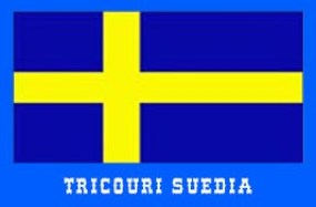 steag suedia
