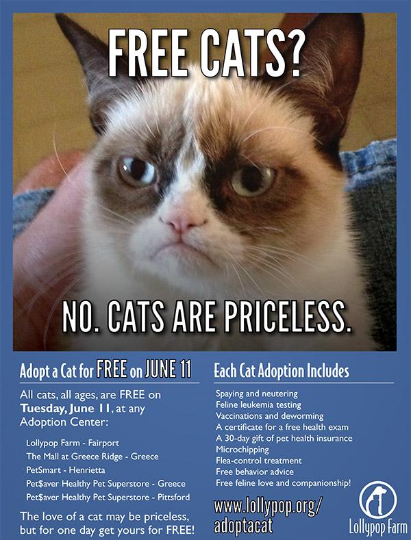 GRUMPY-CAT-POSTER-FREE-ADOPTATHON