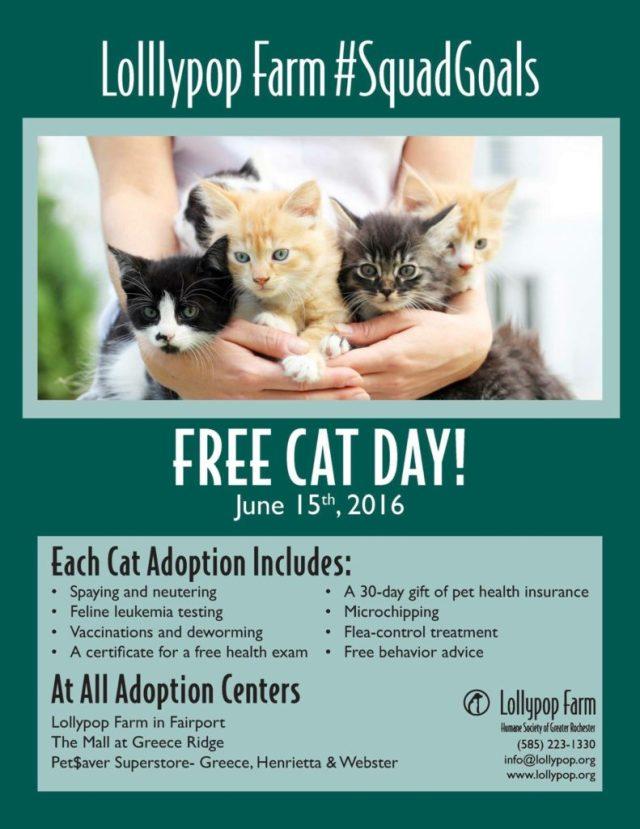 Free Cat Day