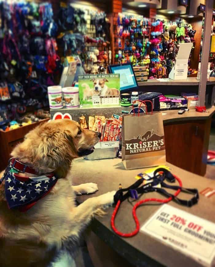 Kriser's Natural Pet Supplies Review | Blue Mountain Belle