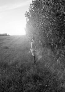 Blue Muse Fine Art with Kelseylinn Davis - Nature's Sweet Caress - 2014