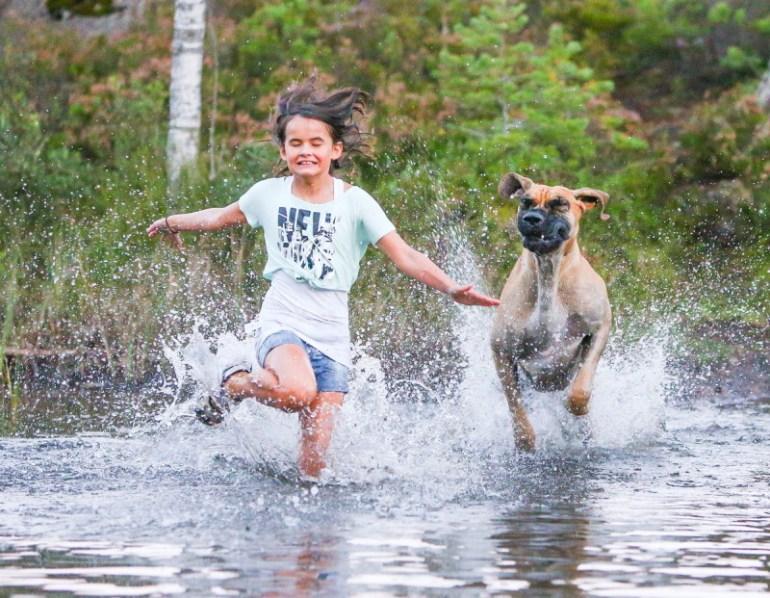 """Vencedor """"Melhor amigo do homem"""" e """"Fotógrafo de Cães do Ano"""" - Fotógrafo: Roger Sjolstad"""
