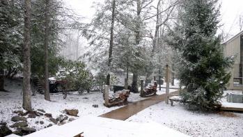 Wintergreen snow 3
