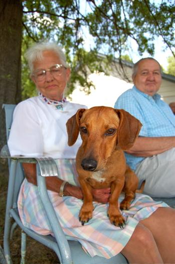 Dog Days in Roseland