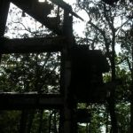 WINTERGREEN : DEVIL'S KNOB : Lightning Strikes House