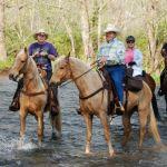 Fleetwood Annual Fall Benefit Trail Ride : Massies Mill