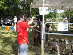 The animal petting farm is always a favorite for youngsters.