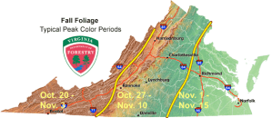 Typical Fall Peak Colors Map Via VA Department Of Forestry