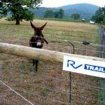 Wintergreen Nature Foundation : Elk Hill Loop