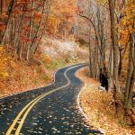 Fall Colors At Peak in Nelson County & Central Virginia