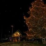 Christmas Tree Lighting At Stoney Creek B & G : December 3rd, 2008