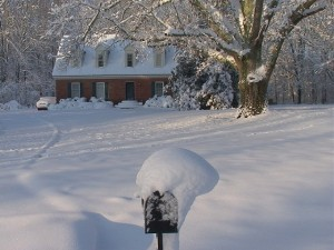 Photo courtesy of Doug Viar : ©2009 NCL Magazine : 11 inches of snow that fell in Jackson, Tennessee.
